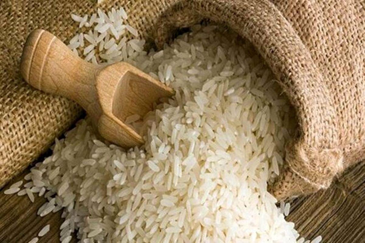 افزایش قیمت برنج بیشتر به علت نبود برنامه است